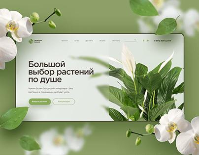 Интернет магазин для комнатных растений
