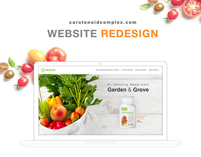Web Design & Development - Redesign