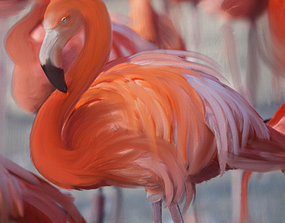 Flamingos_in_oil_painting_MFY_30112020