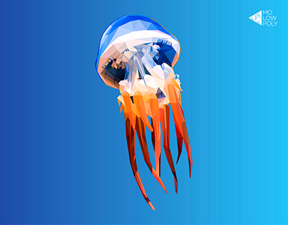Jellyfish | Qualle | LowPoly Illustration