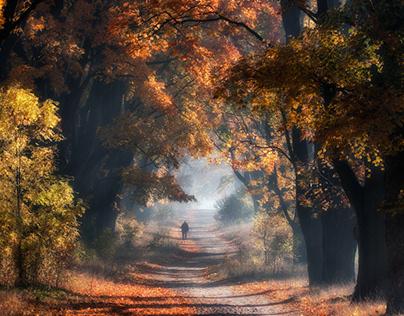 Autumn. Poland