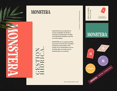 Visual Identity – Monstera