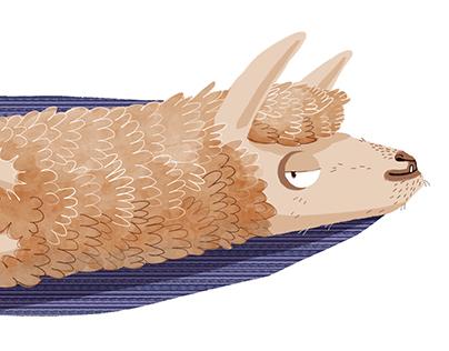 Cozy Sardine Llama!