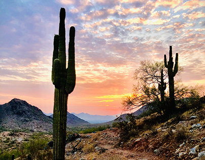 Phoenix North Mountain Trail at Sunrise