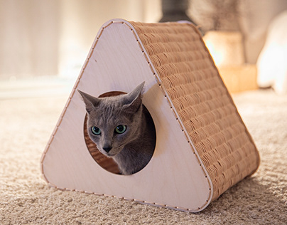 Triangle Cat House
