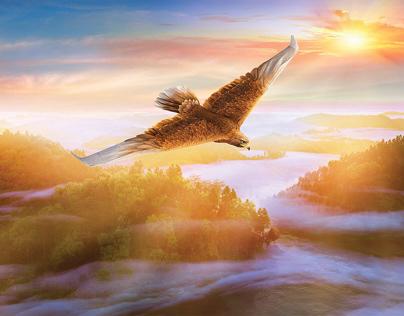 Eagle Plane: Power and Precision
