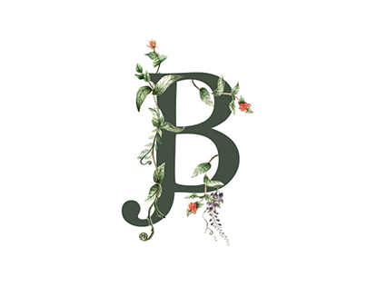 Joshua Brown branding design and custom illustration