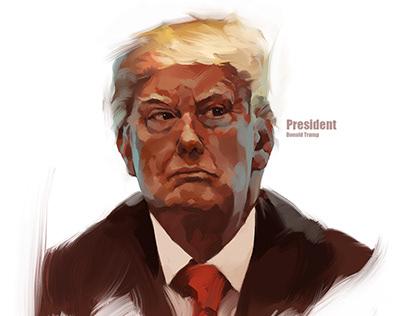 Commercial Portrait / Donald Trump