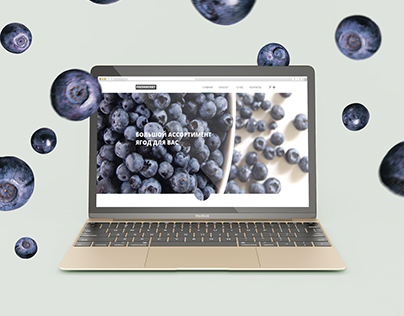 Online store berries