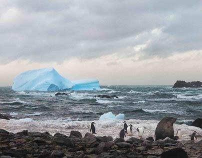 Isla Rey Jorge, Antártica