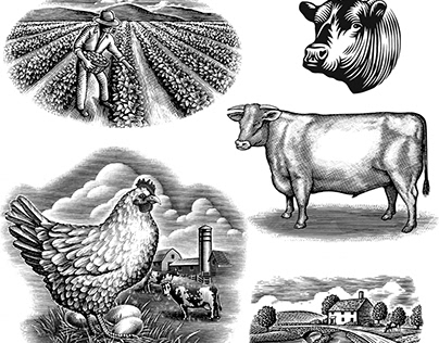 Agricultural Illustrations Collection by Steven Noble