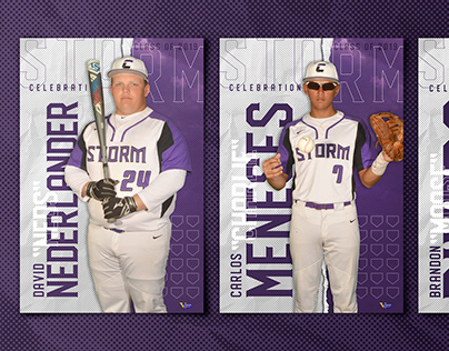 High School Senior Baseball Banners