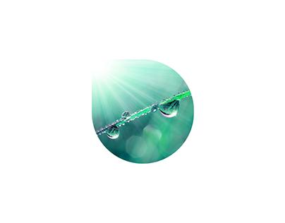 chivi wellness program logo and corporate identity