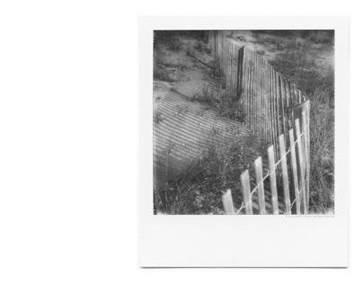 Fence Triptych on Polaroid
