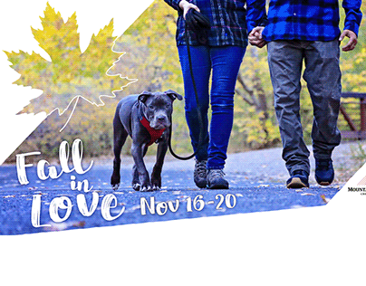 Fall in Love Adoption Event