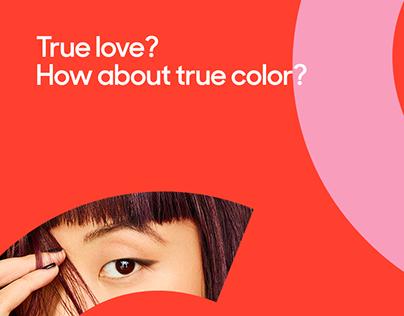 Color & Co - Social Media 2019