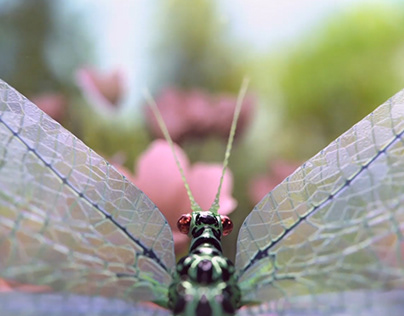 Lacewing model and animation