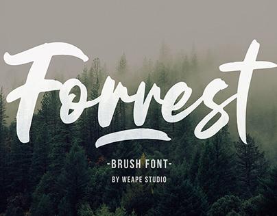 Forrest – Brush Font