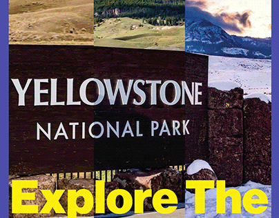 Yellowstone Publication - Publication Design