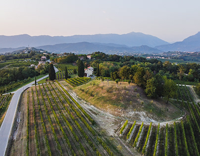 Among the Prosecco hills