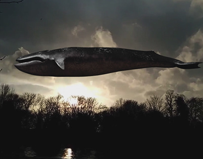 NUKE TO MAYA WORKFLOW: Whale Floating in the sky