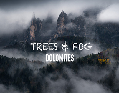 Trees & Mist - Dolomites