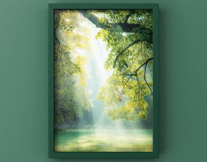 Youn Framing - vol.2