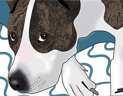 Pets Illustration