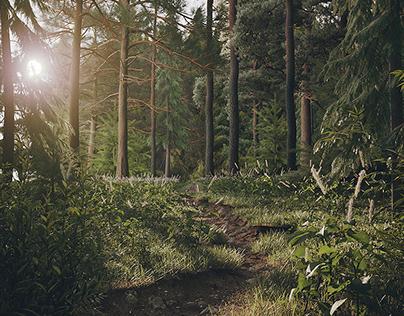 Sabaduri forest