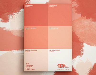 One Hundred Colour Palette Challenge