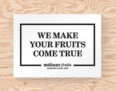 Molnar Fruits
