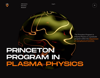 The plasma physics website design concept