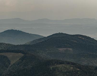 Transforming Landscapes IV