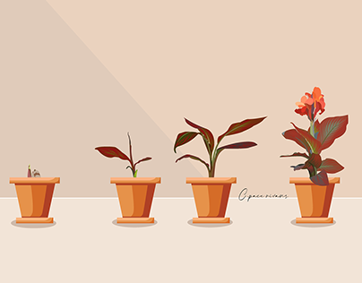 Plants Growing Stages
