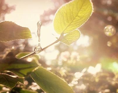 Nature Reel