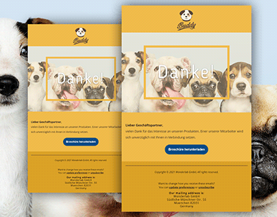 Mailchimp Welcome Email Design