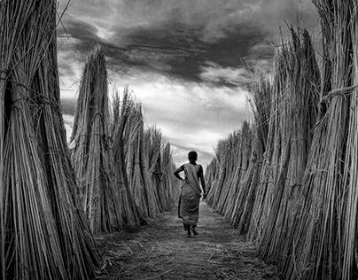 Around The Silver Wire