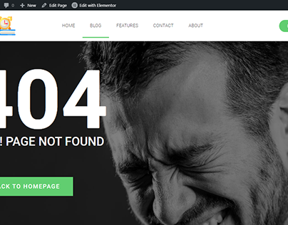 WordPress Website Header with Elementor pro design