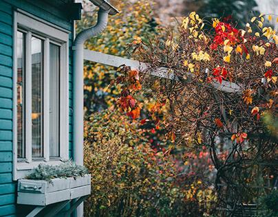 Puolarmaari allotment garden and cottages