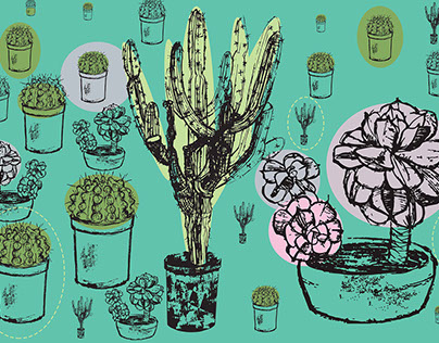 World of Cactus and Succulents