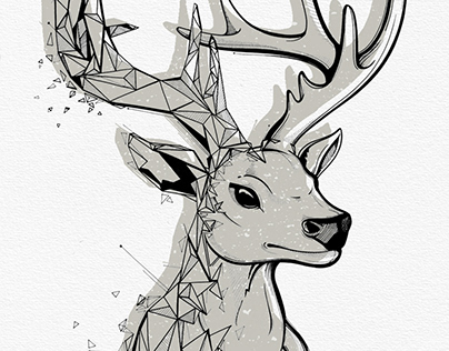 FRAGMENTED Deer