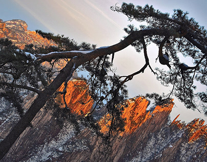 Huangshan   In the Midst of Mountains