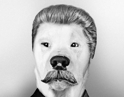 Dog teacher. Собаки-диктаторы / Dogs-dictators