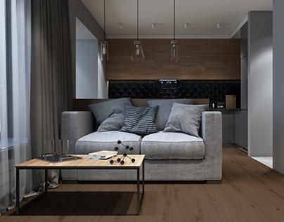 cozy one room flat