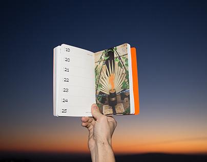diary AFAD 2020