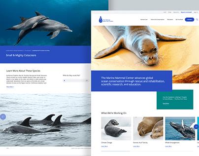 Marine Mammal Center Website Redesign
