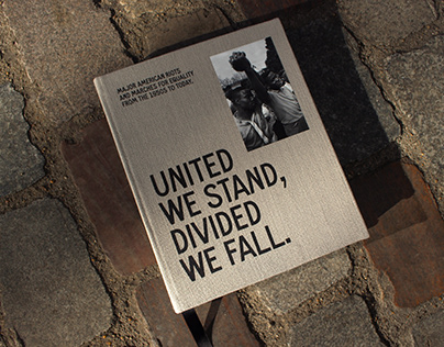UNITED WE STAND, DIVIDED WE FALL - diploma project