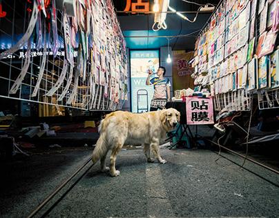 Wuhan Night Market