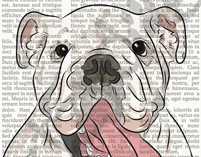 English Bulldog: Newsprint