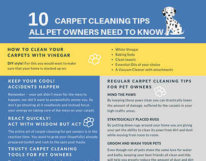 10 Carpet Cleaning Tips All Pet Owners Need to Know